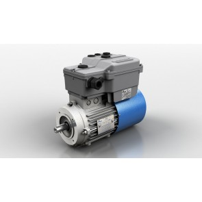 Inverter Motors DV series