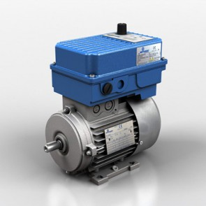 Inverter Motors D series